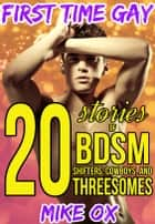 First Time Gay: 20 Stories of BDSM, Shifters, Cowboys, and Threesomes ebook by