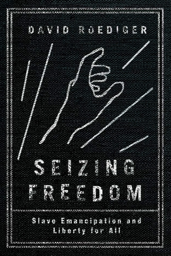 Seizing Freedom Ebook By David Roediger 9781781687055 Rakuten Kobo