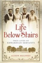 Life Below Stairs ebook by Alison Maloney