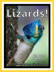 Just Lizard Reptile Photos! Big Book of Photographs & Pictures of Lizards Reptiles, Vol. 1 ebook by Big Book of Photos
