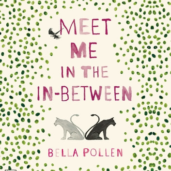Meet Me in the In-Between audiobook by Bella Pollen