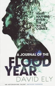 A Journal Of The Flood Year ebook by David Ely