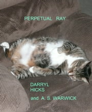 Perpetual Ray ebook by Darryl Hicks