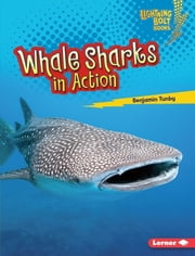 Whale Sharks in Action ebook by Benjamin Tunby