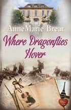 Where Dragonflies Hover - When a stranger's life is more intriguing than your own ebook by