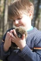 Hedgehogs For Beginners ebook by Donna Jaynes