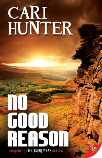No Good Reason ebook by Cari Hunter