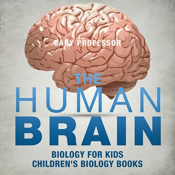 The Human Brain Biology For Kids Childrens Biology Books Ebook