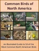 Common Birds of North America - An Illustrated Guide to 50 of the Most Common North American Birds ebook by Sven Hyltén-Cavallius