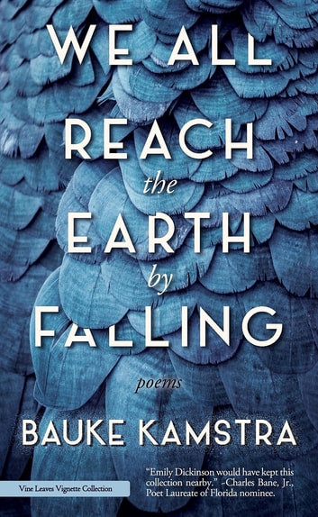 We All Reach the Earth by Falling ebook by Bauke Kamstra