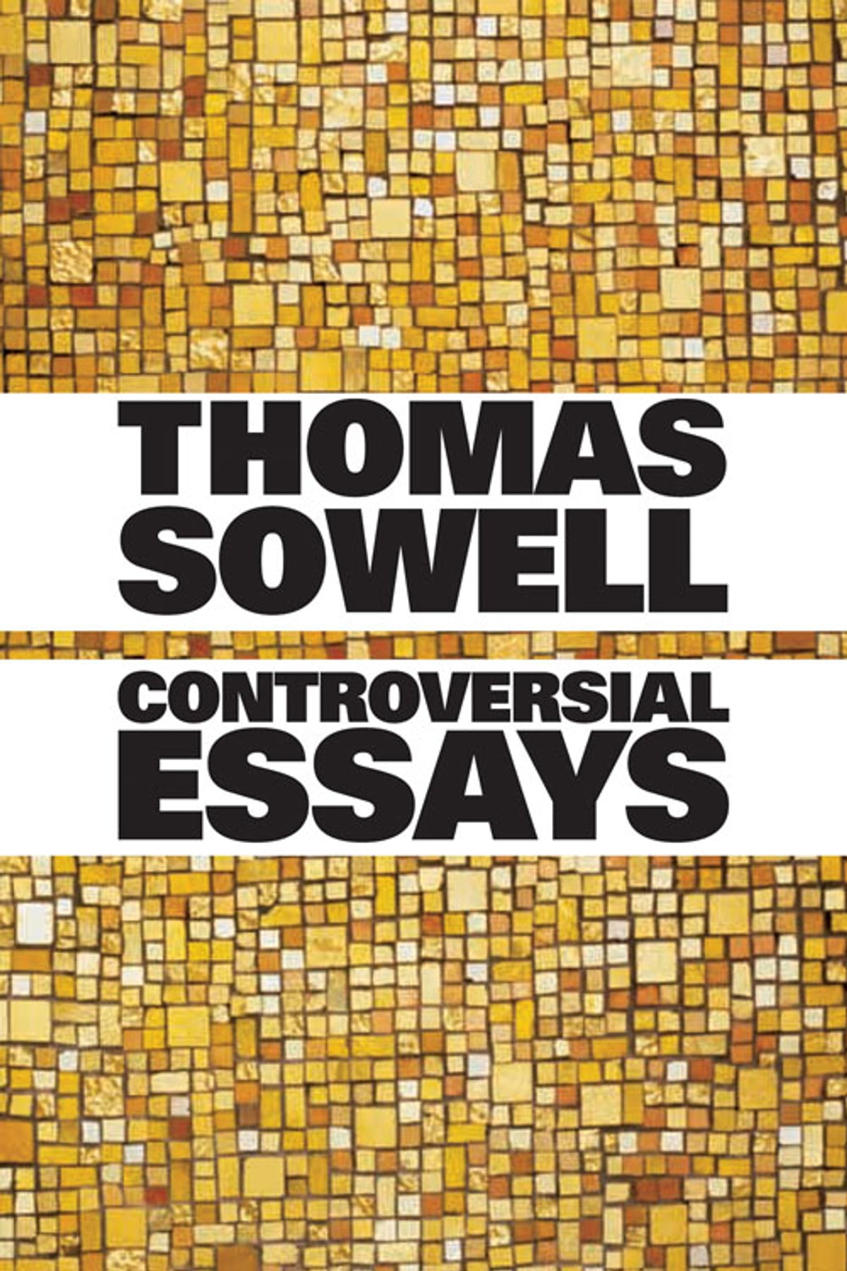 Controversial Essays Ebook By Thomas Sowell    Controversial Essays Ebook By Thomas Sowell    Rakuten Kobo Write My Book Report Com also Speeches For Sale  Have Someone Write My Business Plan