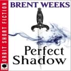 Perfect Shadow - A Night Angel Novella Audiolibro by Brent Weeks, James Langton