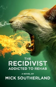 The Recidivist: Addicted to Rehab ebook by Mick Southerland