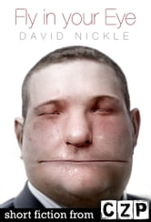 Fly in your Eye ebook by David Nickle