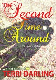 The Second Time Around ebook by Terri Darling