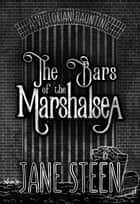 The Bars of the Marshalsea - A Victorian Haunting ebook by Jane Steen