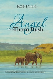 Angel in a Thorn Bush ebook by Rob Fynn