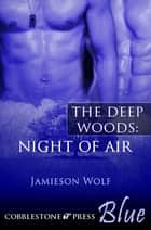 Night of Air ebook by Jamieson Wolf