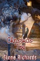 Christmas Toy ebook by Stone Richards