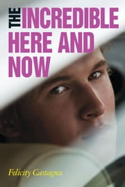 The Incredible Here and Now ebook by Felicity Castagna