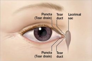 Blocked Tear Duct: Causes, Symptoms and Treatments eBook by Polly Trennell