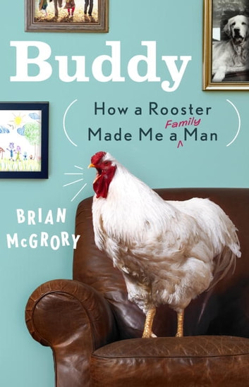 Buddy - How a Rooster Made Me a Family Man ebook by Brian McGrory