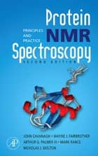 Protein NMR Spectroscopy - Principles and Practice ebook by John Cavanagh, Wayne J. Fairbrother, Arthur G. Palmer,...