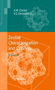 Zeolite Characterization and Catalysis - A Tutorial ebook by Arthur W. Chester,E.G. Derouane