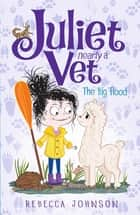 The Big Flood: Juliet, Nearly a Vet (Book 11) - Juliet, Nearly a Vet (Book 11) ebook by Rebecca Johnson