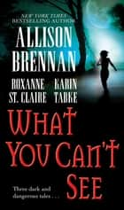 What You Can't See ebook by Allison Brennan, Karin Tabke, Roxanne St. Claire
