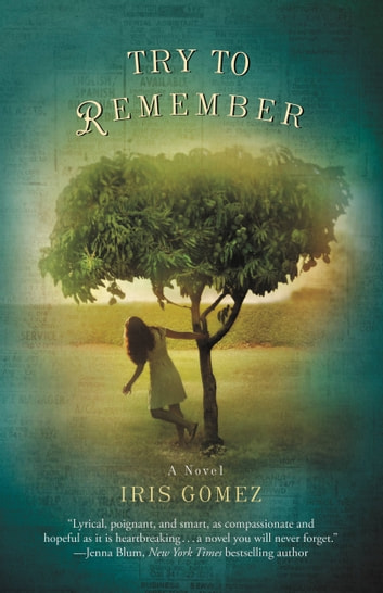 Try to Remember ebook by Iris Gomez