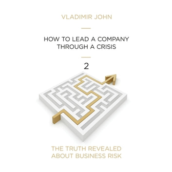 How To Get a Company Through a Crisis audiobook by Vladimir John