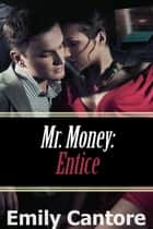 Entice: Mr. Money - Mr Money, #5 ebook by Emily Cantore
