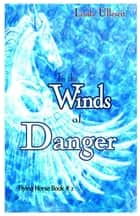 In the Winds of Danger ebook by Linda Ulleseit