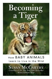 Becoming a Tiger - The Education of an Animal Child ebook by Susan McCarthy