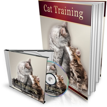 How to Train Your Cat - Learn the basic training your cat needs audiobook by Empowered Living