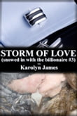 STORM OF LOVE (snowed in with the billionaire #3)