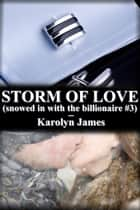 STORM OF LOVE (snowed in with the billionaire #3) ebook by Karolyn James