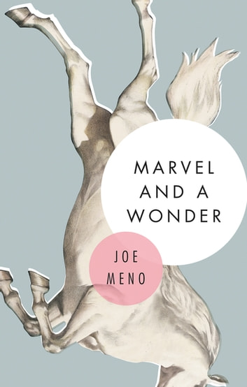 Marvel and a Wonder ebook by Joe Meno