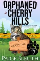 Orphaned in Cherry Hills - A Cold Case Murder Mystery Whodunit ebook by Paige Sleuth