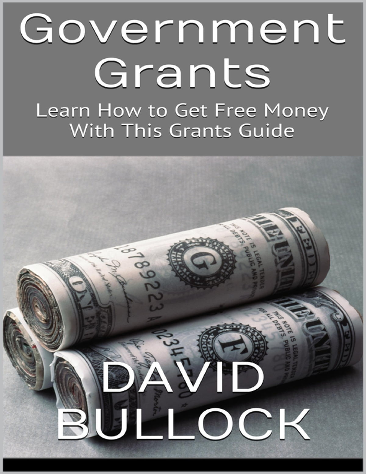 Government grants: learn how to get free money with this grants.