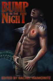 Bump in the Night ebook by Heidi Belleau,Ally Blue,Kari Gregg