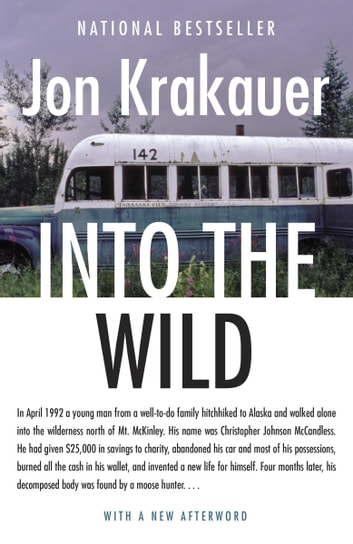 into the wild a synopsis