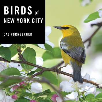 Birds of New York City ebook by Cal Vornberger