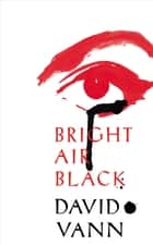 Bright Air Black eBook by David Vann