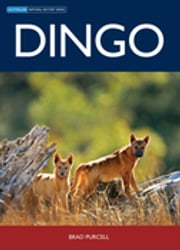 Dingo ebook by Brad Purcell