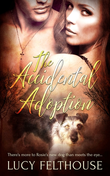 The Accidental Adoption ebook by Lucy Felthouse