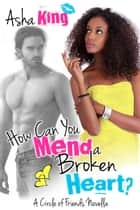 How Can You Mend a Broken Heart? ebook by Asha King