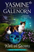 Well of Secrets: A Paranormal Women's Fiction Novel - Chintz 'n China, #7 ebook by Yasmine Galenorn