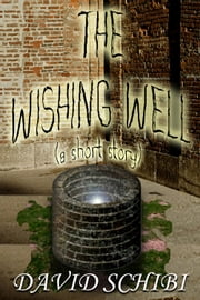 The Wishing Well ebook by David Schibi